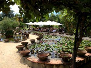 The Liliy Gardens © Saint Louis