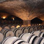 Meursault wine tasting © Grand Victoria